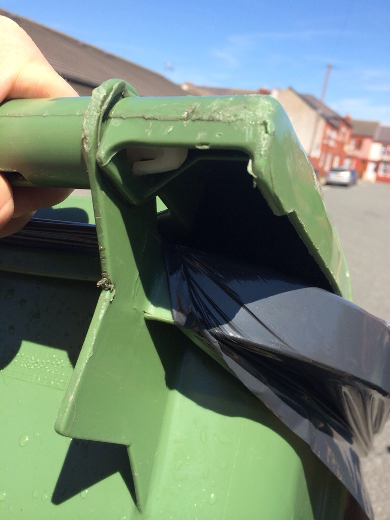 how to get rid of maggots in wheelie bin